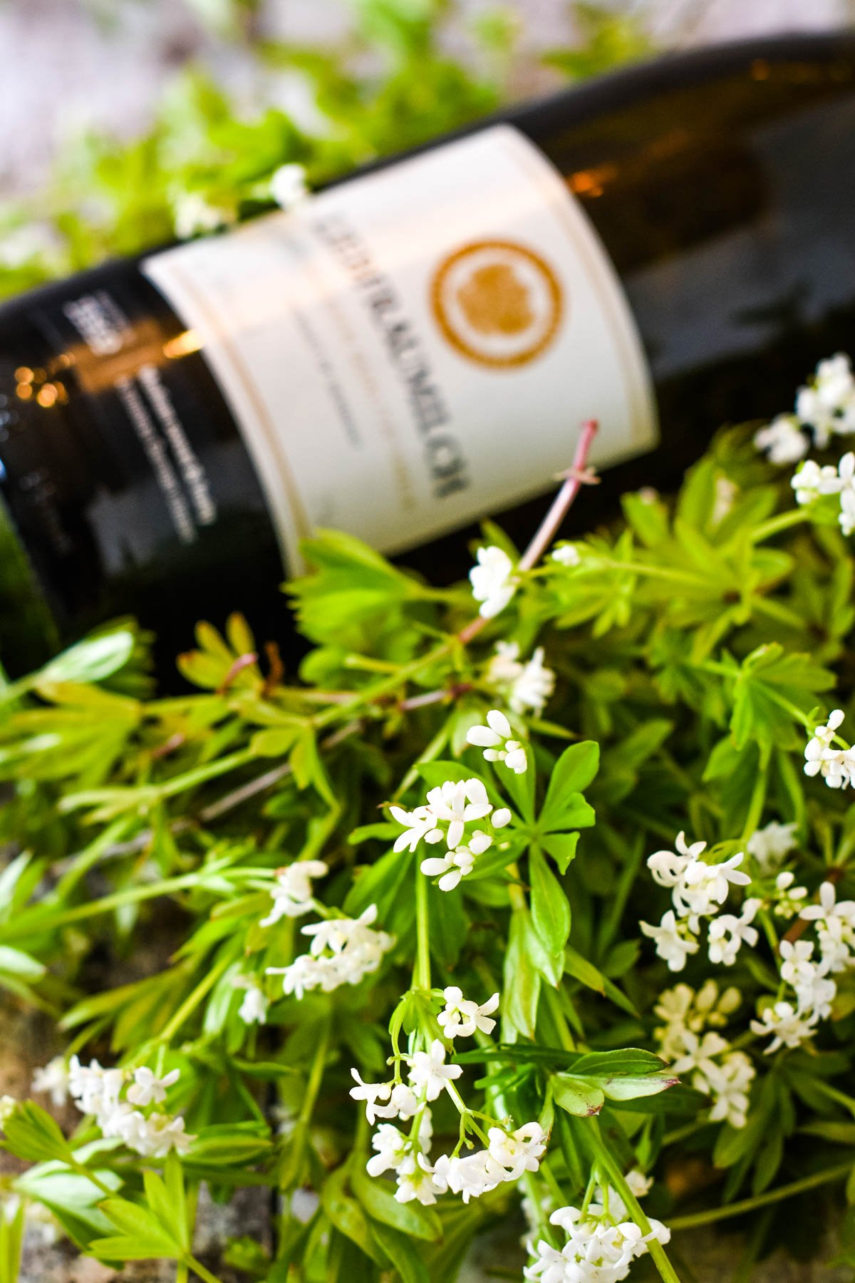 ingredients for may wine - sweet woodruff and german wine