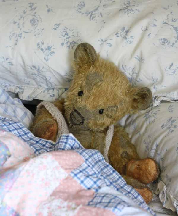 Sleepybear1