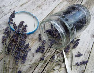 How To Infuse Your Own Oils With Herbs