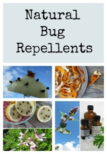 Seven Top Tips For Natural Bug Repellents