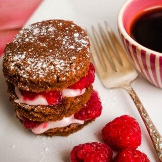 chocolate raspberry cakes