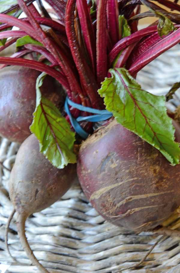 BeetrootFresh