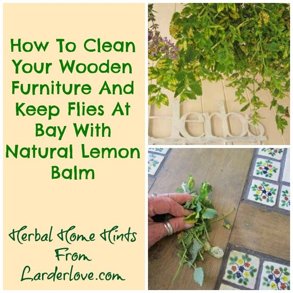 lemon balm for furniture cleaning