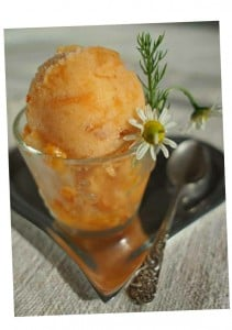 Nectarine and Chamomile Sorbet