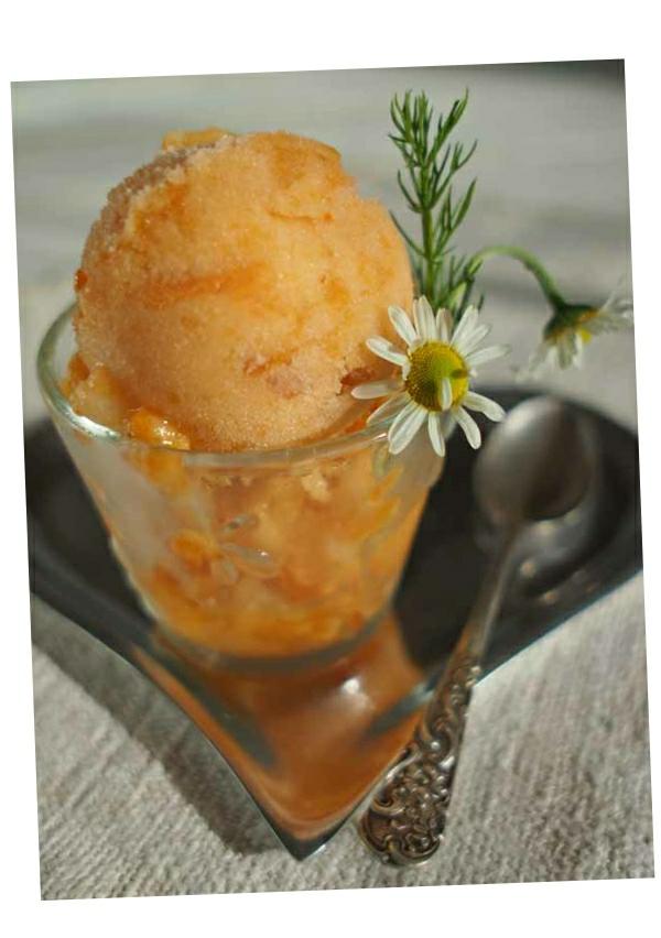 Nectarine and honey ice-cream 1