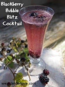 Bramble Bubble Blitz The Blackberry Cocktail