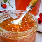 rosehip jelly by larderlove