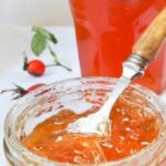 Scottish rosehip jelly pin image