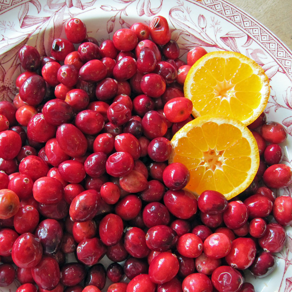 bowl of cranberries and orange slices
