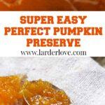 pumpkin preserve/jam pin image