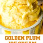golden plum ice-cream pin image