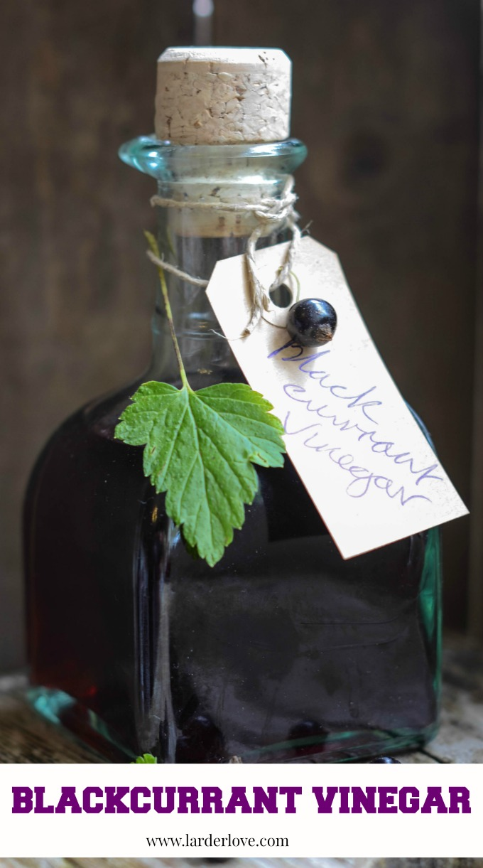 This rich and fruity Blackcurrant Vinegar is the perfect addition to rich salads, on roasted vegetables too