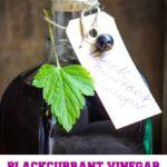 homemade spiced blackcurrant vinegar