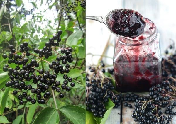 Elderberry Chutney 3