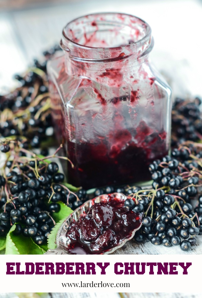 elderberry chutney by larderlove