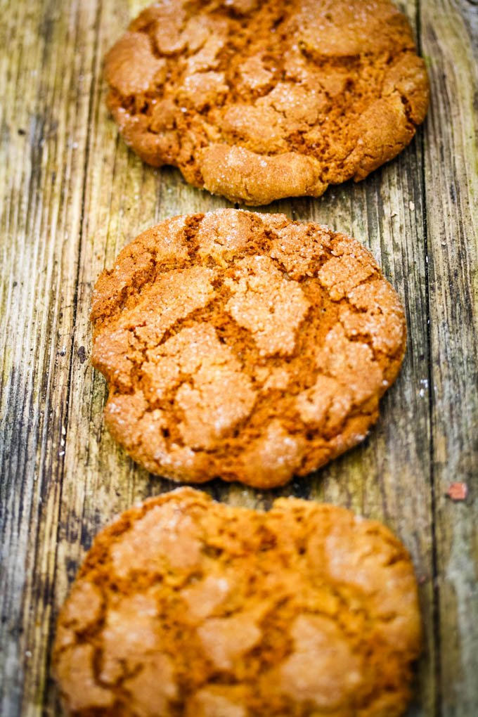 row of gingersnaps