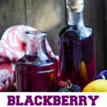 blackberry and apple gin pin image
