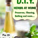 DIY Herbs At Chome + Vids Cover 1