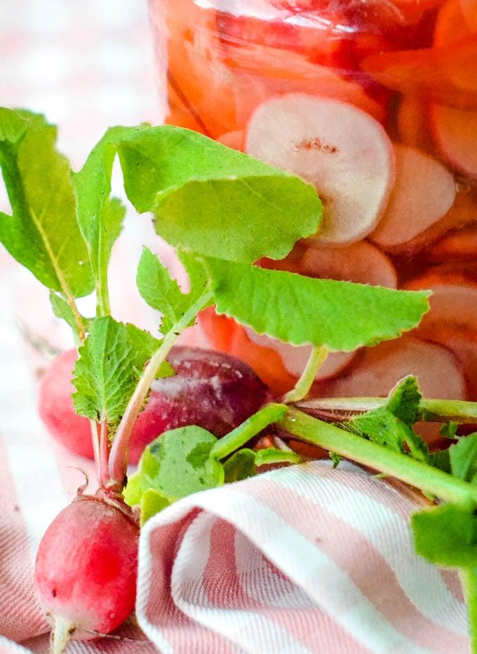 close up of radishes
