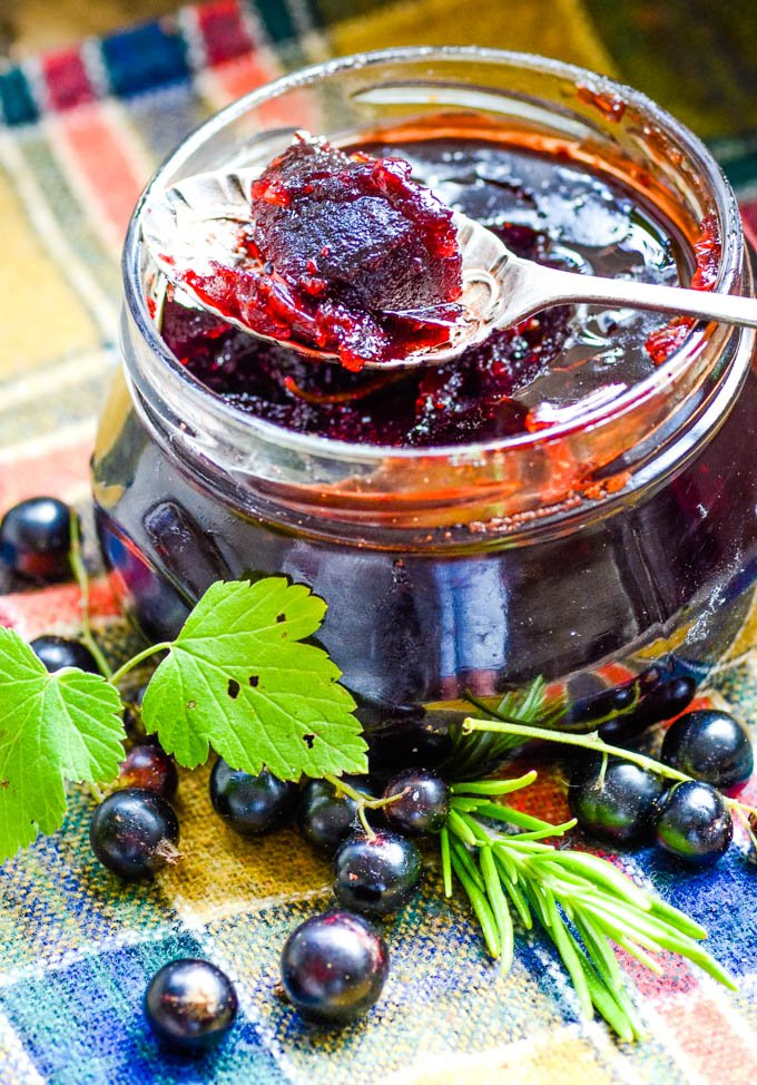 blackcurrant fruit cheese in jar
