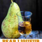 pear liqueur pin image