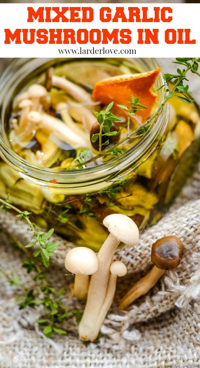 mixed garlic mushrooms in oil pin image