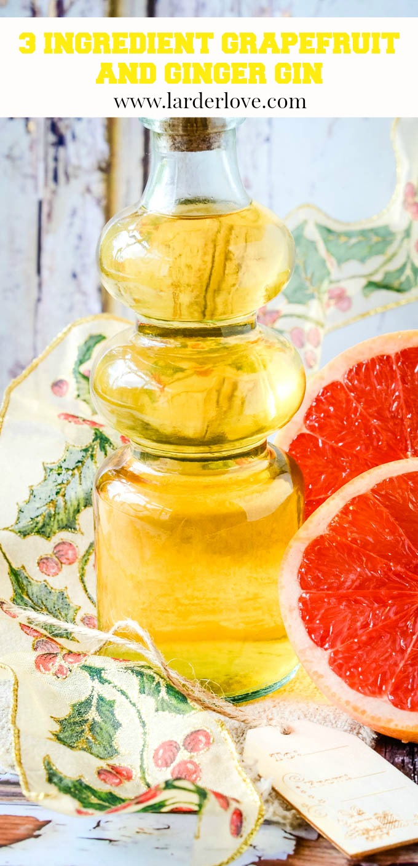 grapefruit and ginger gin pin image