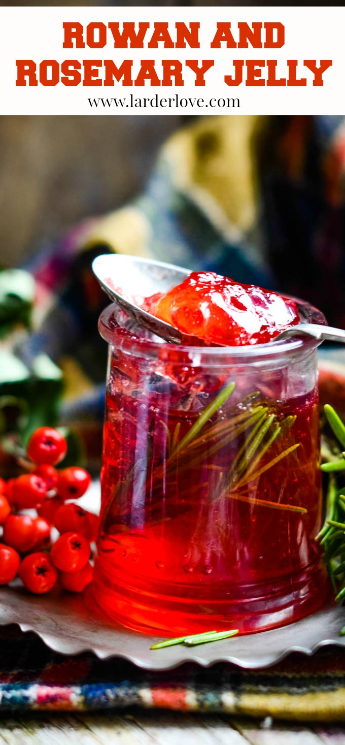 rowan and rosemary jelly the perfect sweet and savoury taste of autumn and foraging in Scotland by Larder Love