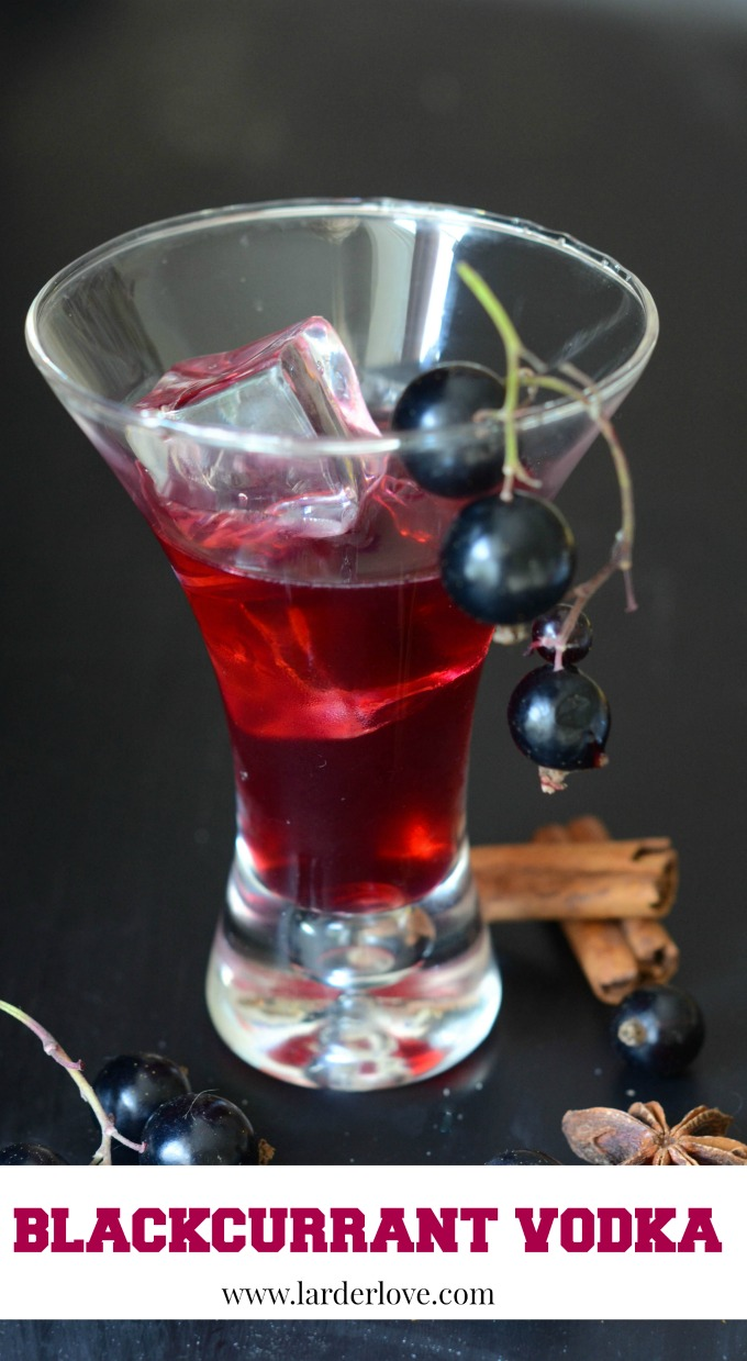 blackcurrant vodka by larderlove