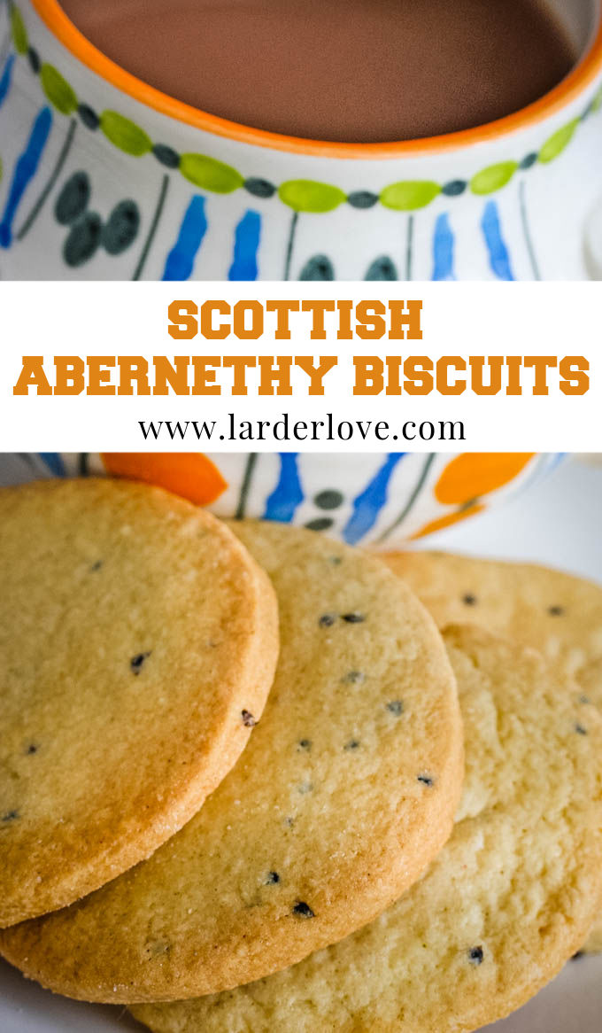 Abernethy biscuits pin image