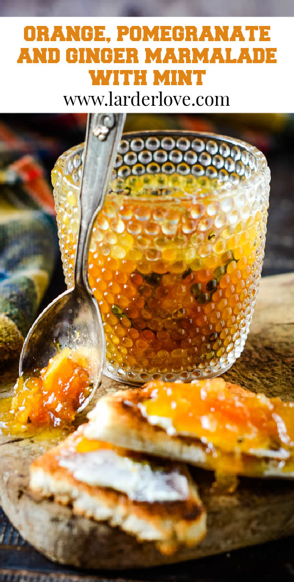 orange pomegranate ginger and mint marmalade pin image