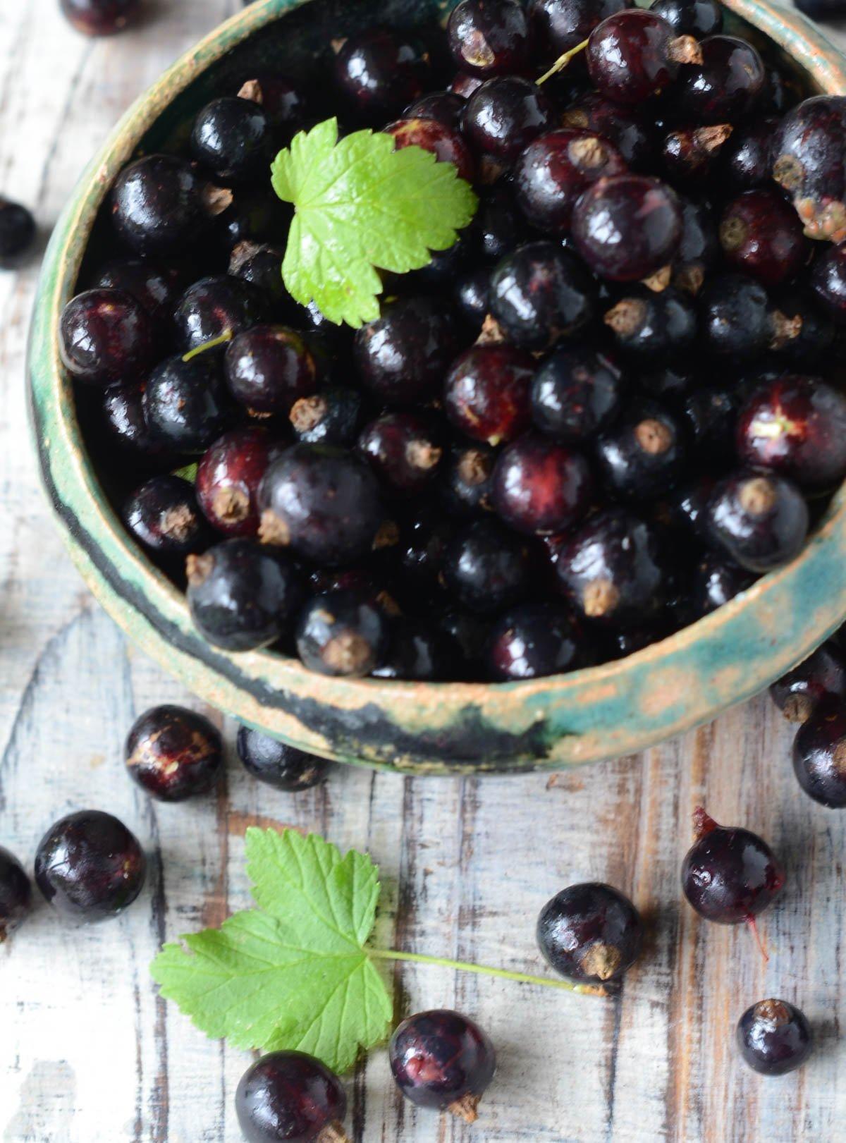 bowl of blackcurrants